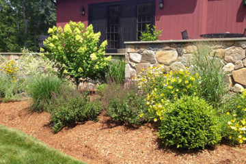 Plantings & Custom Gardens