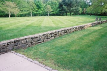 Lawn Care & Property Maintenance
